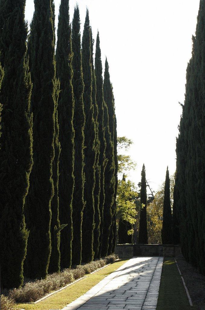 Greystone-Mansion-grounds-brandy-chin-3801.jpg