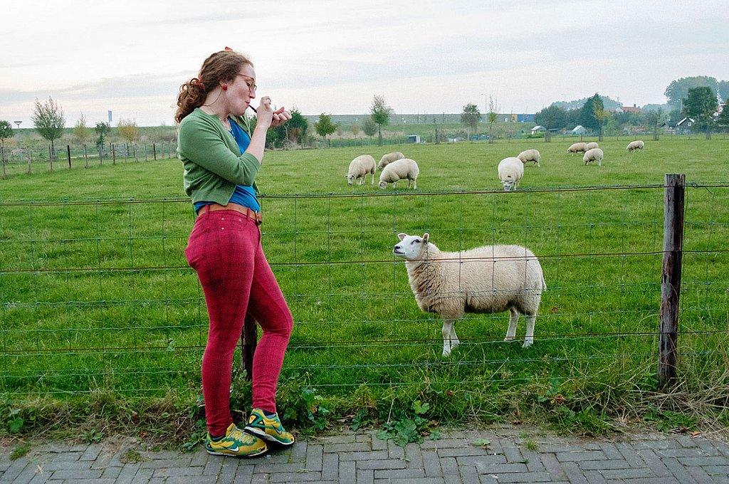 Hannah-and-sheep-Netherlands.jpg